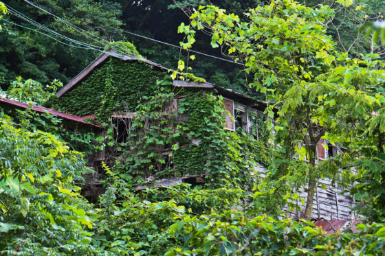 abandoned, asia, haikyo, japan, japanese, ruin, urban exploration, urbex