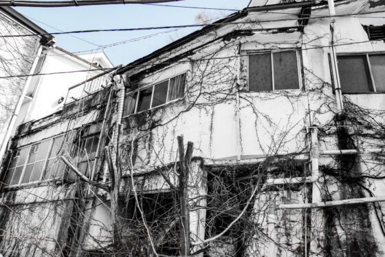 abandoned, asia, chubu, haikyo, japan, japanese, ruin, urban exploration, urbex, yamanashi