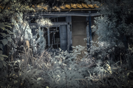 abandoned, asia, haikyo, hospital, infrared, japan, japanese, ruin, urban exploration, urbex