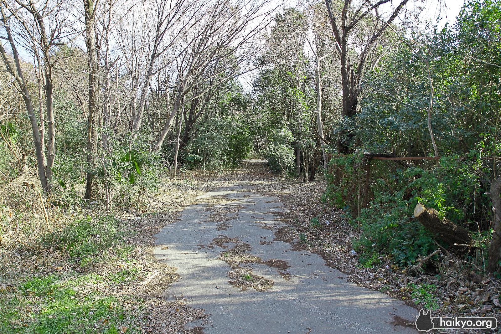 Path at Fuchu